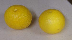 ニューサマーオレンジ?