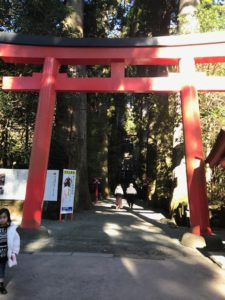 箱根神社(九頭龍神社)