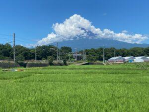 会社裏の富士山
